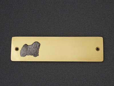 Puli - Brass Door Plate