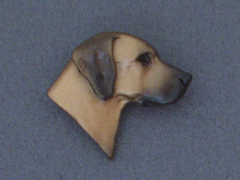 Rhodesian Ridgeback - Brooche Small Head