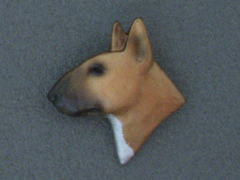 Bullterrier - Brooche Small Head