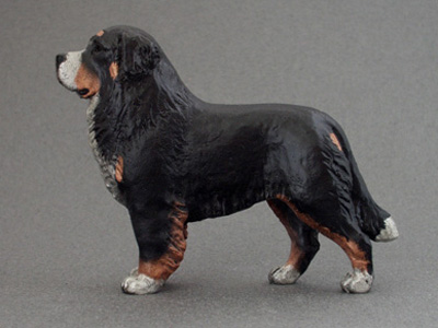 Bernese Mountain Dog - Maxi Model