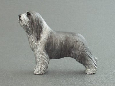 Bearded Collie - Maxi Model