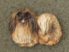Pekingese - Pin Figure