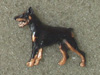 Dobermann - Pin Figure