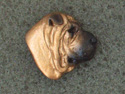 Sharpei - Pin Head