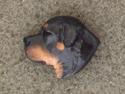 Rottweiler - Pin Head