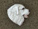 Kuvasz - Pin Head