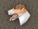 Fox Terrier Smooth - Pin Head